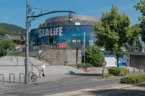 Sealife in Königswinter