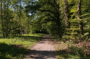 Park im Ortsteil Millrath