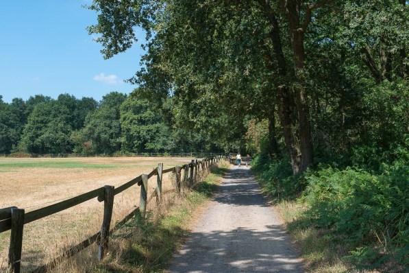 Am Waldrand geht der Weg entlang