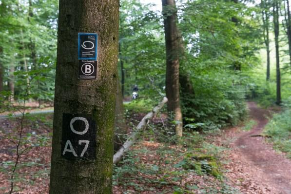 A7 gilt es zu folgen