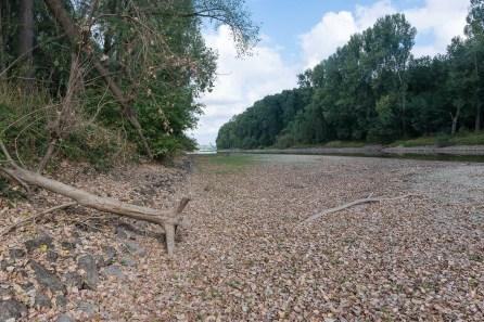 Flussbett der Sieg