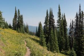 Wanderweg in Sun Peaks