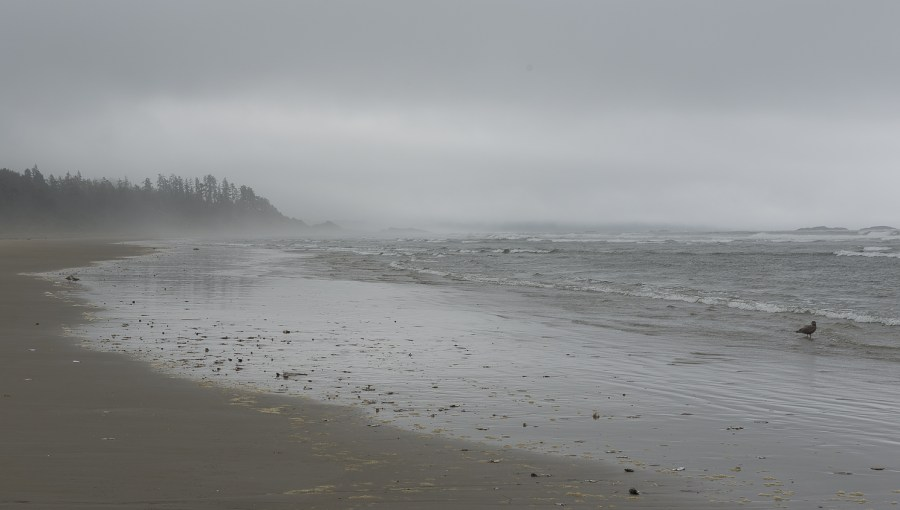 Long Beach bei Tofino