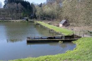 Fischteich im Murbachtal