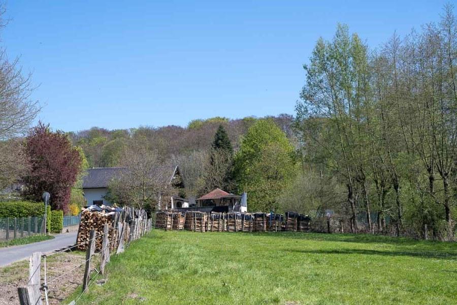 Brennholzstapel im Ölbachtal
