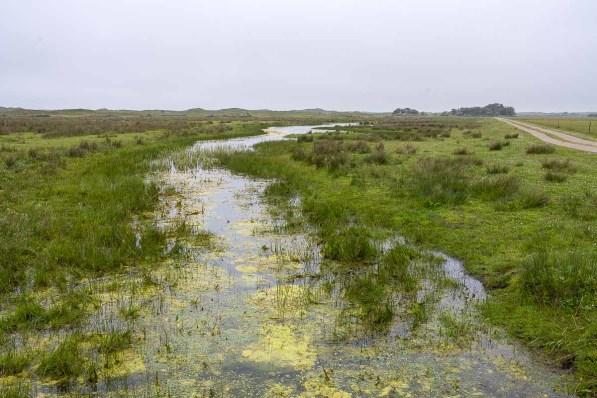 Wassergraben parallel zum Wanderweg