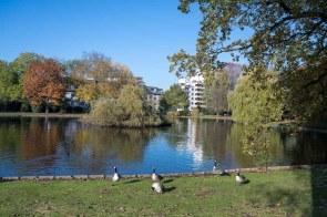 Weiher im Stadtpark Odenkirchen