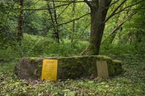 Waldlehrpfad am Wersbach.