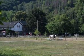 Pferdehof an der Rur