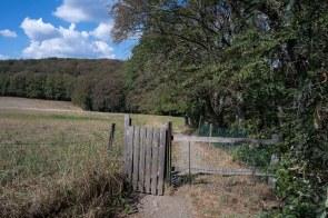 Die Passage über eine Weide war durch Tore abgesichert