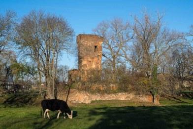Burgruine Vernich