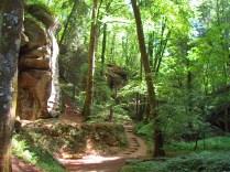 Felsenweg 1