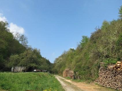 Der Forstweg
