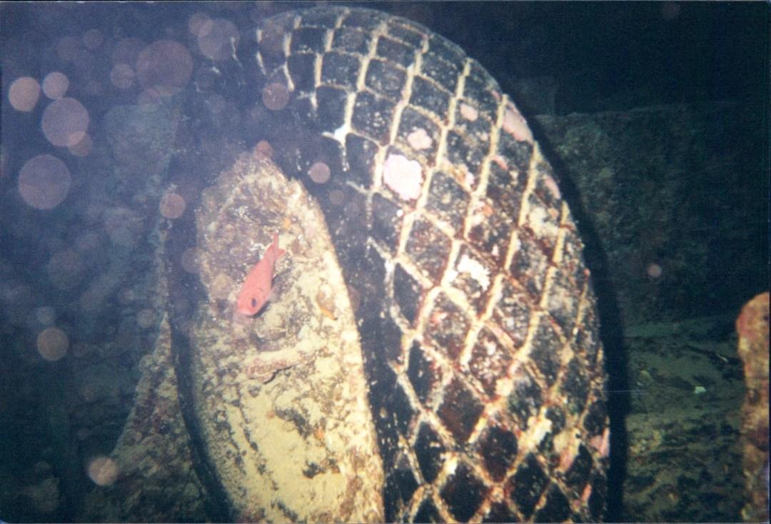 SS Thistlegorm wreck dive Ras Muhammed National Park Sharm-el-Sheik, Egypt 2001
