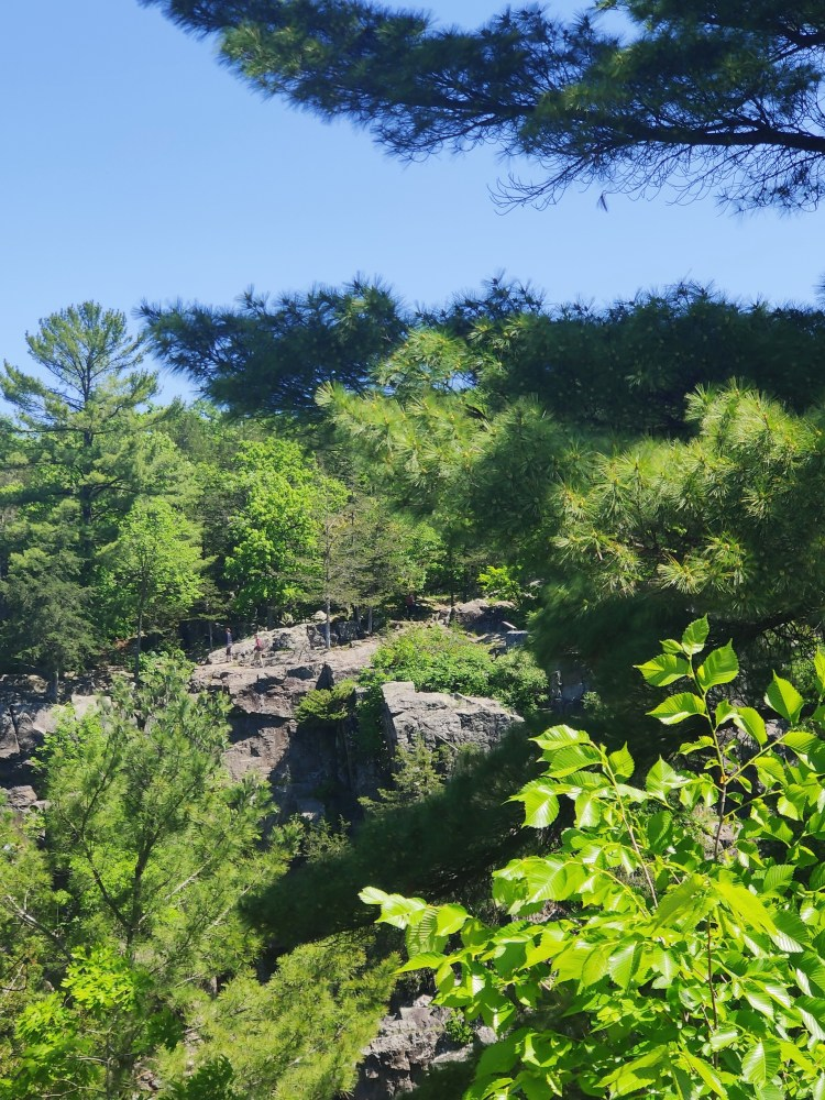 Scenic Views around taylors falls