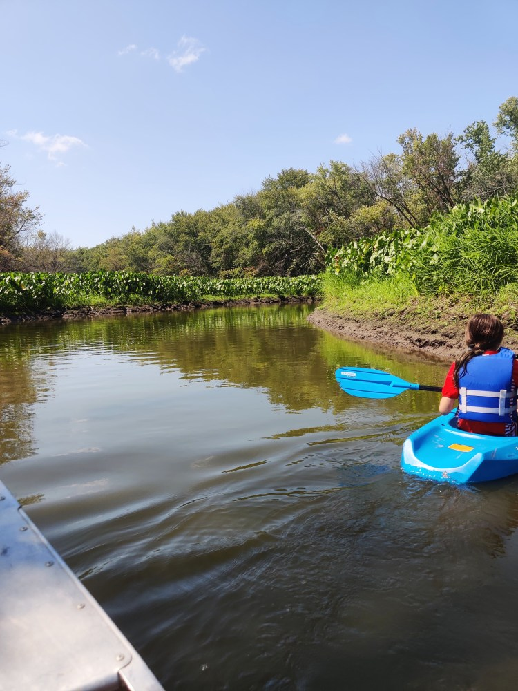Exciting Camping Adventures in the Quad Cities canoe