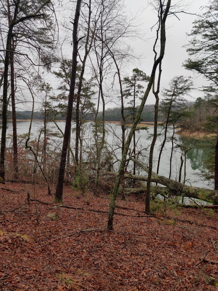 Exciting Places in the Blue Ridge Mountains lake blue ridge