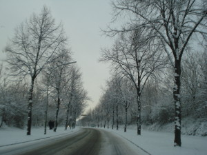 Hamm in Winter: My First Visit