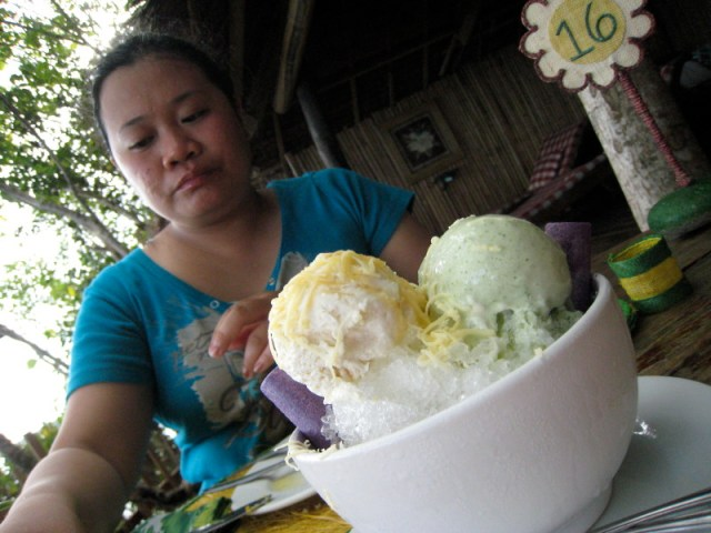 Ginger and Malunggay Ice Cream