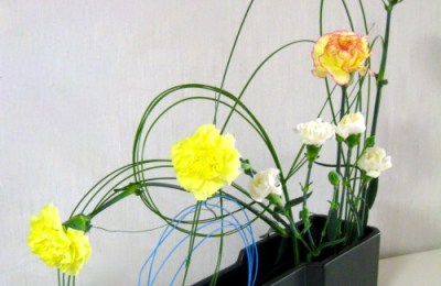 Steel Grass and Carnations