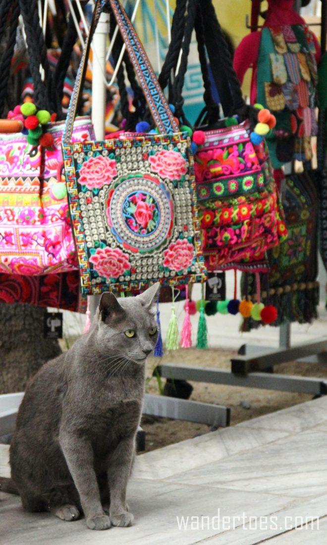 Plaka Cat 10 Wandertoes
