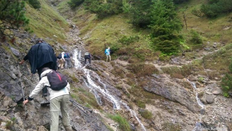 Wandern_PwC_Gipfelstuermer_2014_Tag2_Tobias_051