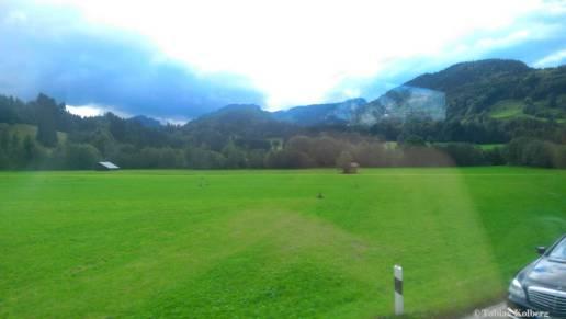 Wandern_PwC_Gipfelstuermer_2014_Tag2_Tobias_188