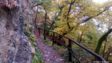 Wandern_20141103_Baumgeistertour_Rundweg_Tobias_057