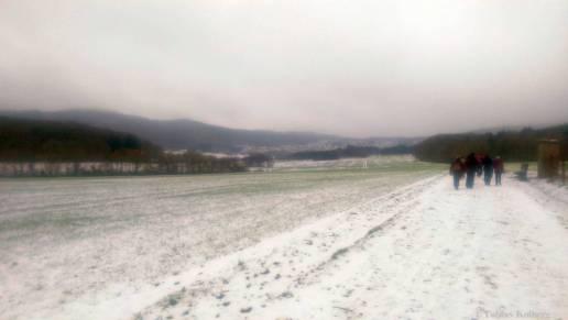 Wandern_20150125_Anwandern_2015_Rundweg_Tobias_024