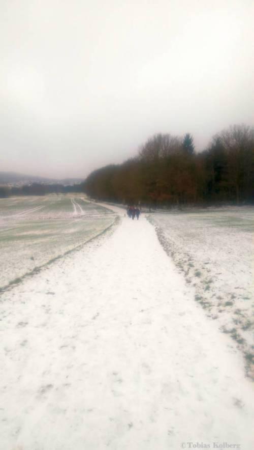 Wandern_20150125_Anwandern_2015_Rundweg_Tobias_025