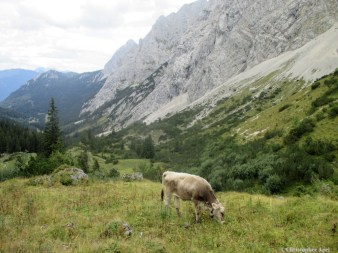 Wandern_20150911_Gipfelstürmer2015_Tag1_119