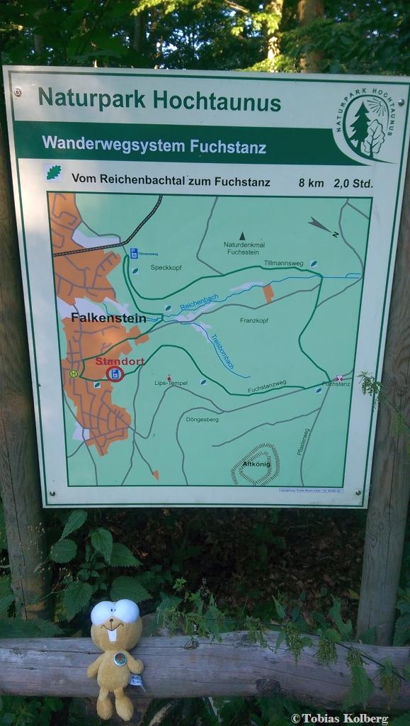Wandern_20150823_Falkenstein-Altkönig-Fuchstanz_Rundweg_Tobias_001