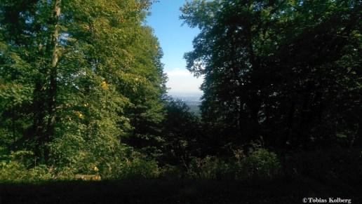 Wandern_20150830_Taunus_Hohemark_Fuchstanz_Runde_Tobias_001
