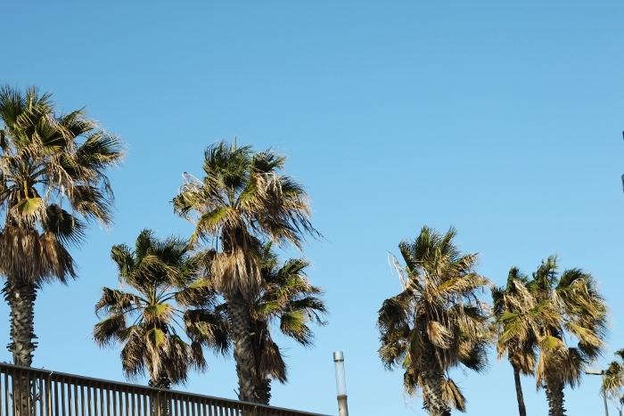 barcelona beach sun