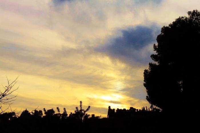 barcelona park sunset