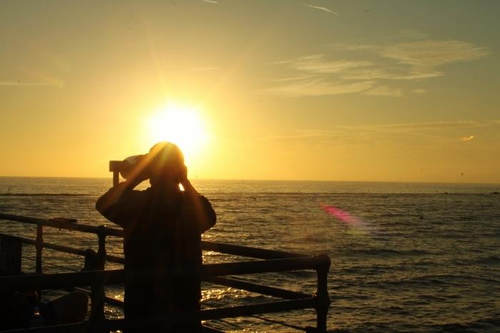 santa monica sunset picture