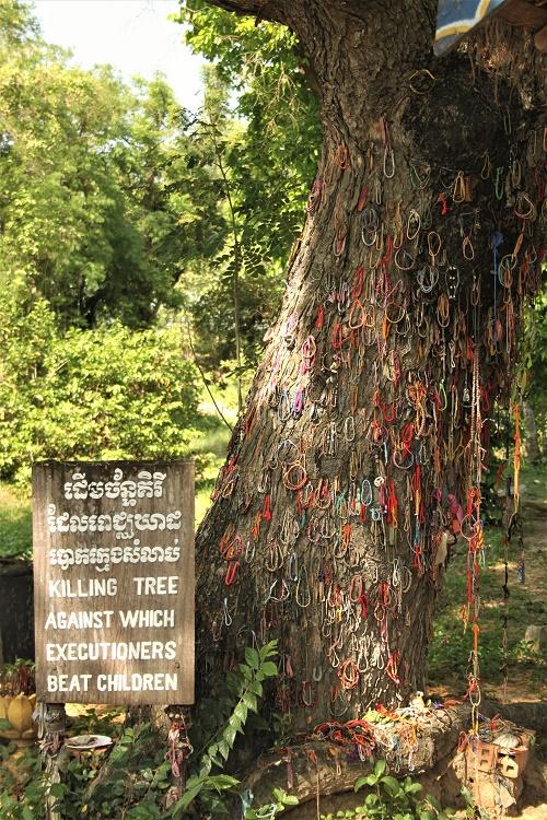 Killing Fields Tree