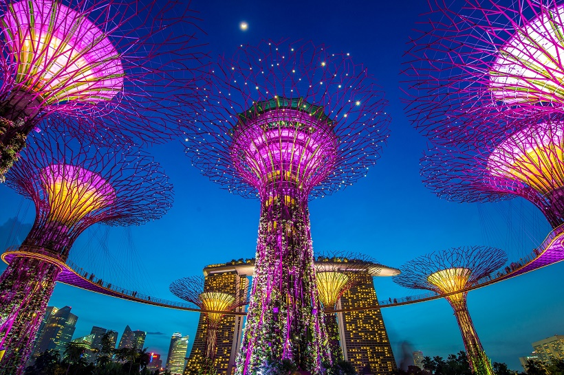 Supertree Grove, Gardens by the Bay, Singapore