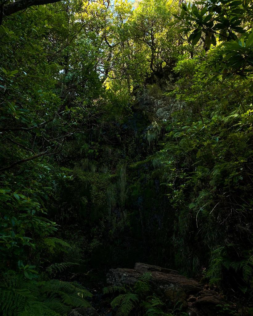 Lagoa do Vento hike