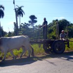 All modes of transportation in Cuba
