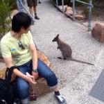 Bob and a wallaby, Wineglass Bay, Tasmania