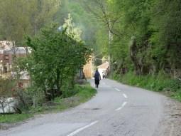 Dorfidyll in Serbien.