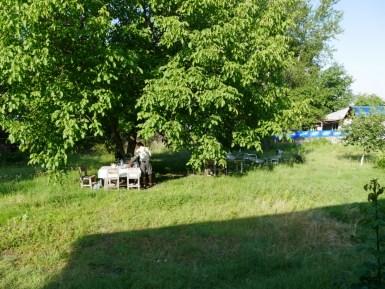Teegartencamp.// Teegarden camp.