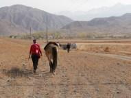 Kashgar wird angeführt.// Kashgar is lead away.
