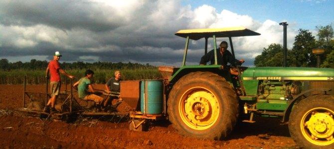 Wereldreis #17 | Werken op de boerderij is niet altijd leuk