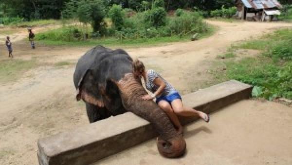 Kusje voor meneer olifant