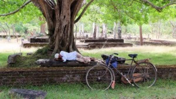 Siesta Polonnaruwa