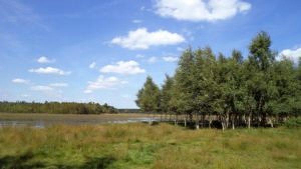 pieterpad-landschap-drenthe