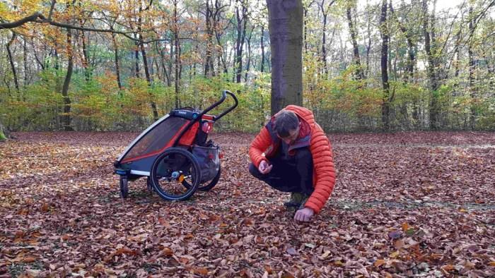 Trekvogelpad etappe 8 beukenootjes zoeken in het bos