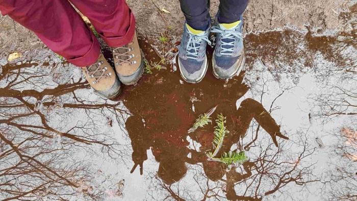 Trekvogelpad etappe 9 reflectie in plassen